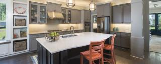 Nexton by John Wieland Homes