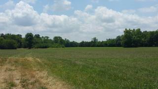 103 Heath Branch Road, Chapel Hill TN