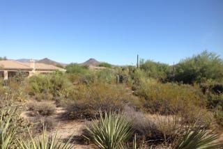 10396 East White Feather Lane 17, Scottsdale AZ