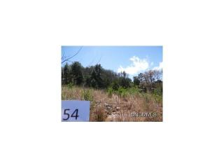 23 Climbing Aster Way #54, Asheville NC