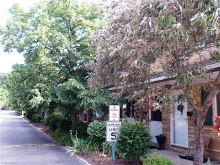 1602 Lee Terrace Drive #C2, Wickliffe OH