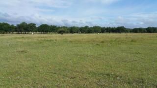 1053 Antelope Run, Medina TX