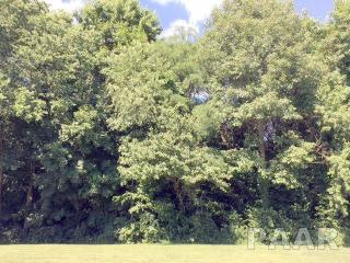 LOT 24 24 Rosewood, Canton IL
