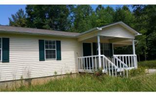 136 Mount Pleasant Road, Mineral Bluff GA
