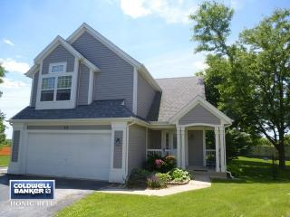 23 Longbow Court, South Elgin IL