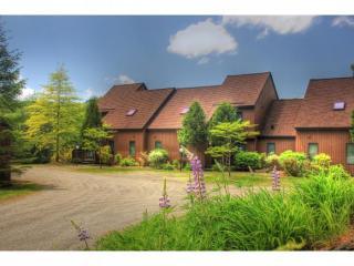 251 Luce Hill Road #85, Stowe VT
