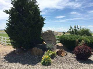 27627 Petolla Road, Wilder ID