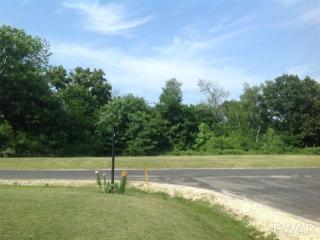 South Deer Run, Bartonville IL