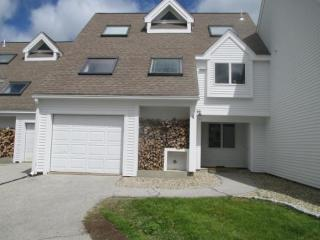 4 High Country Way, Waterville Valley, NH 03215