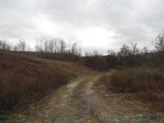 County Route 101, Woodhull NY