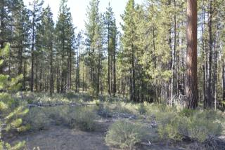 16419 Beaver Drive, Bend OR