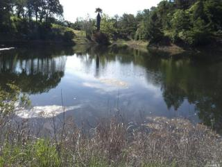 6125 Pope Valley Road, Pope Valley CA