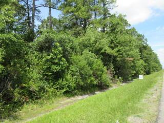 3531 County Road 218, Middleburg FL