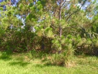 5680 Northwest Croton Avenue, Port Saint Lucie FL