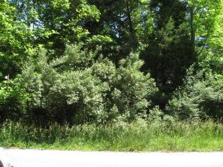 Lot 47 Preston Place Drive, Abingdon VA