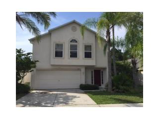 30631 Birdhouse Drive, Wesley Chapel FL