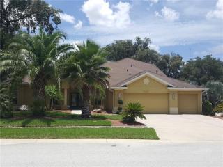 10116 Paddock Oaks Drive, Riverview FL