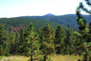 Lot 5 Powder House Trail, Lead SD