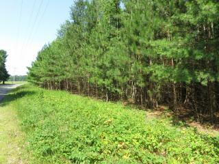 Lot 2 On Oneil Road, Three Lakes WI