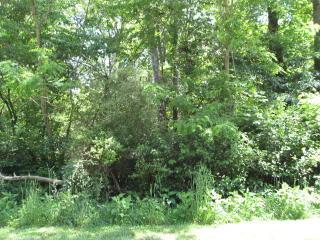 Lot 30 Prestonplace Drive, Abingdon VA