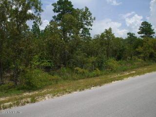 Tbd Ne 65 Lane, Williston FL