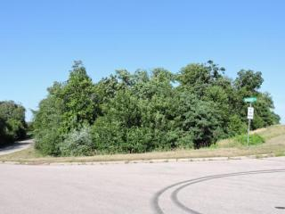 Archery Drive #1.32 ACRES, Omro WI