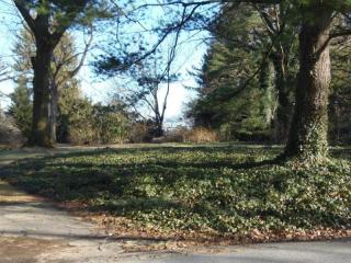 1519 Ridge Road, Lancaster PA