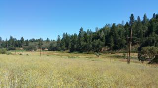 20 Acres Owl Creek Court, Cool CA