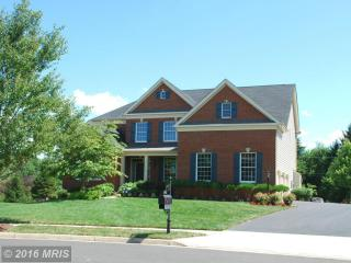 14405 Yellow Tavern Ct, Haymarket, VA 20169