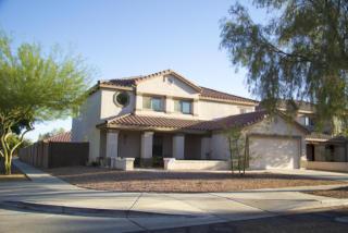 3115 West Molly Lane, Phoenix AZ