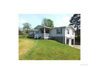 10081 Route 242, Little Valley NY
