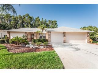 5814 Rosemere Drive, Palm Harbor FL