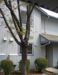205 Elbridge Avenue #I, Cloverdale CA
