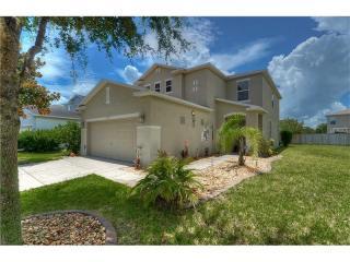 9539 Maxson Drive, Land O' Lakes FL