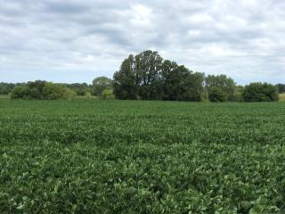 26.75 Ac County Road T, Columbus WI
