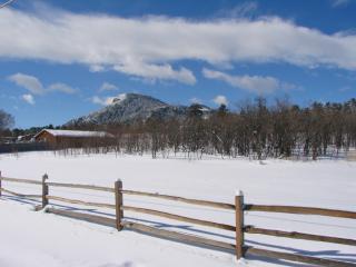 8955 Spruce Mountain Road, Larkspur CO
