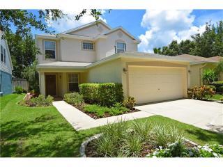 5815 Tanagerlake Road, Lithia FL