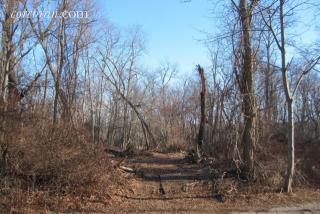 55 West Neck Road, Shelter Island NY