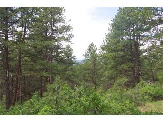2240 Wood Sorrel Road, Larkspur CO