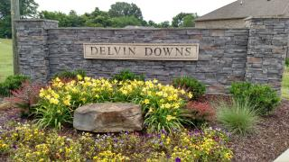 Delvin Downs by Capitol Homes