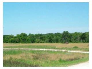 8067 Trail Ridge #36, Dexter MI