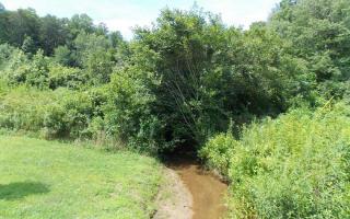 Weaver Creek Mtn L5, Blue Ridge GA