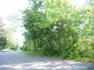 Upper Parker Road, Selkirk NY
