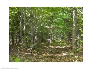 Lot 10-D Ladd Road, Rome ME