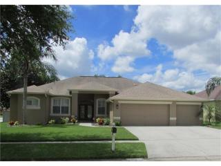 2853 Duncan Tree Circle, Valrico FL