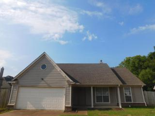 12621 Fox Run Cv, Olive Branch, MS 38654
