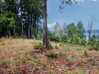 411 East Plantation Way, Shelton WA