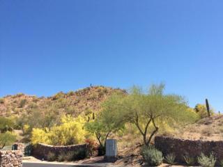 4315 North Santiago Circle #13, Mesa AZ