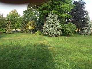 39054 Ladrone Avenue, Sterling Heights MI