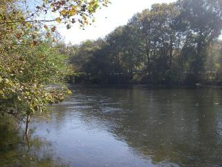 240 Rivers Edge Lane, Benton TN